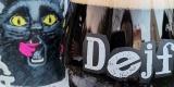 1_dejf_Gato-Negro