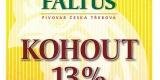faltus_Kohout13