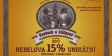 chomutov_rebelova15