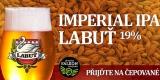 labut_imperialipa