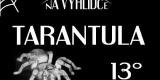 na vyhlidce_tarantula