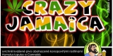 radous_crazyjamaica
