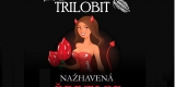 trilobit_Certice